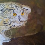 Stage 3 painting of a Siberian Eagle Owl by Mandi Baykaa-Murray
