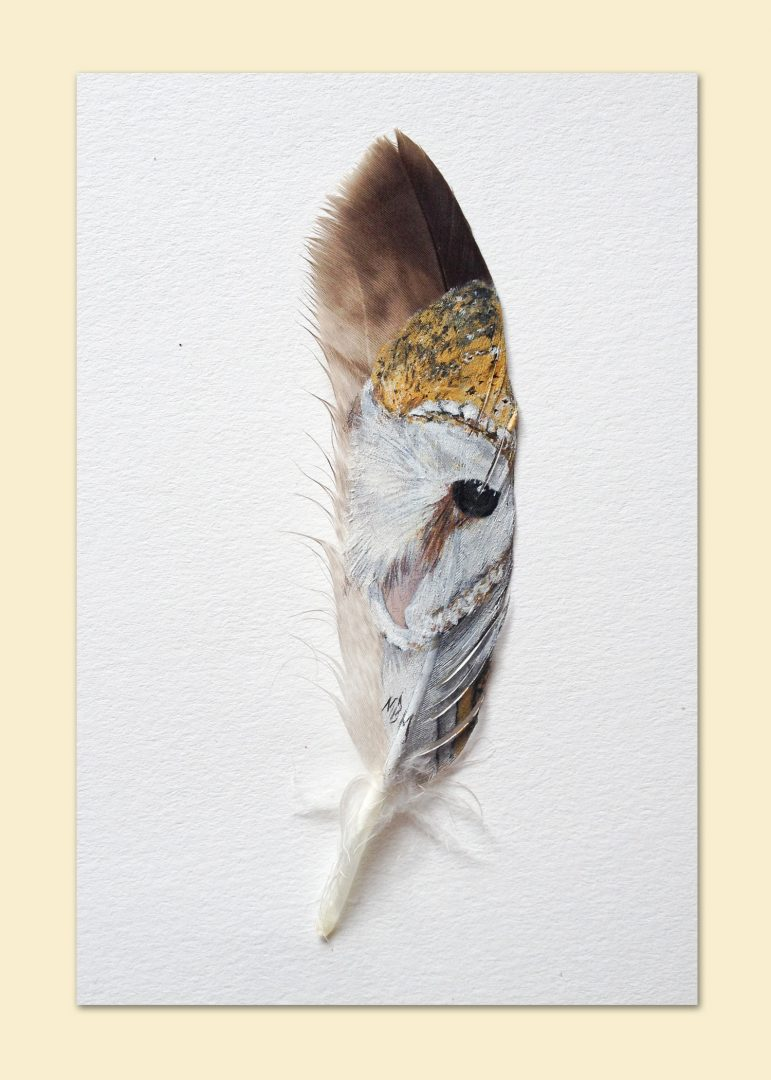 Barn Owl Feather Greetings Card - The Feather Lady