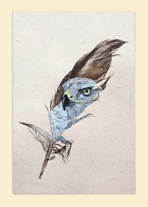 goshawk painted feather