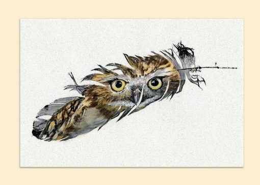 burrowing owll painted feather