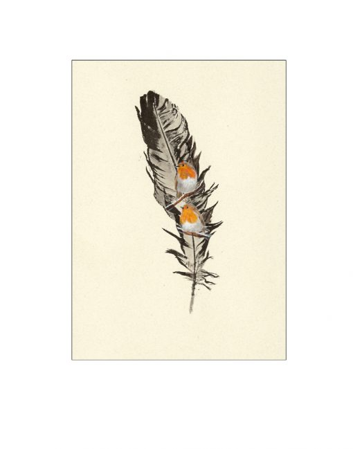 robin painted feather