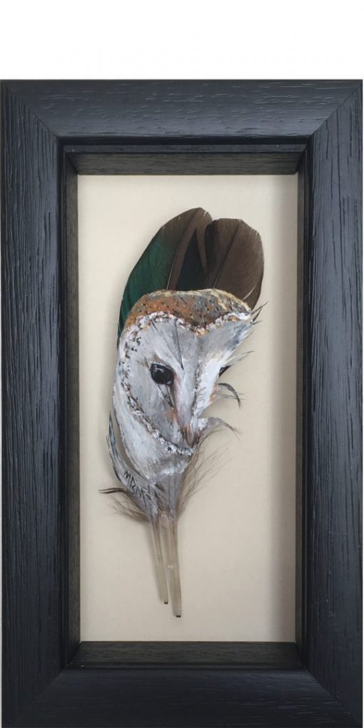 Framed Barn Owl Painted Feather