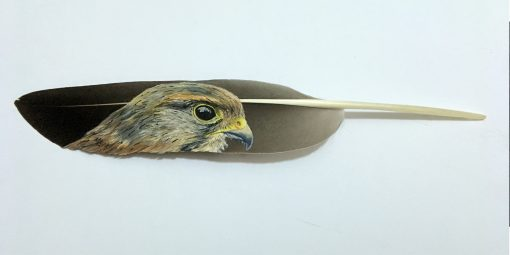 Kestrel painted on a feather