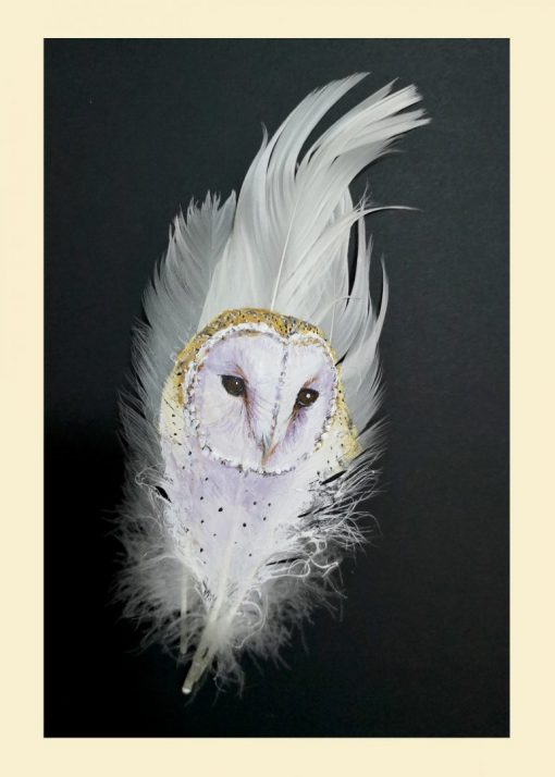 Greetings Card Barn Owl Painted On Fluffy White Feathers