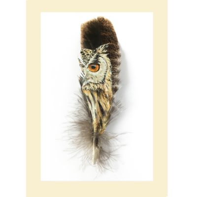 Greetings card Rock Eagle Owl Painted Feather