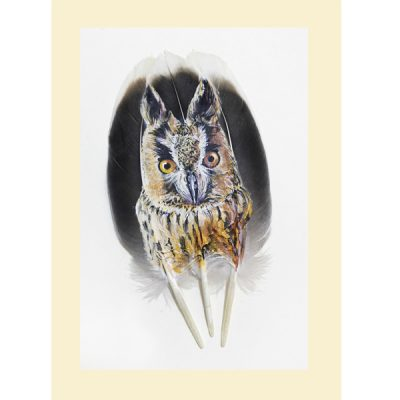 Long Eared Owl Feather Painting