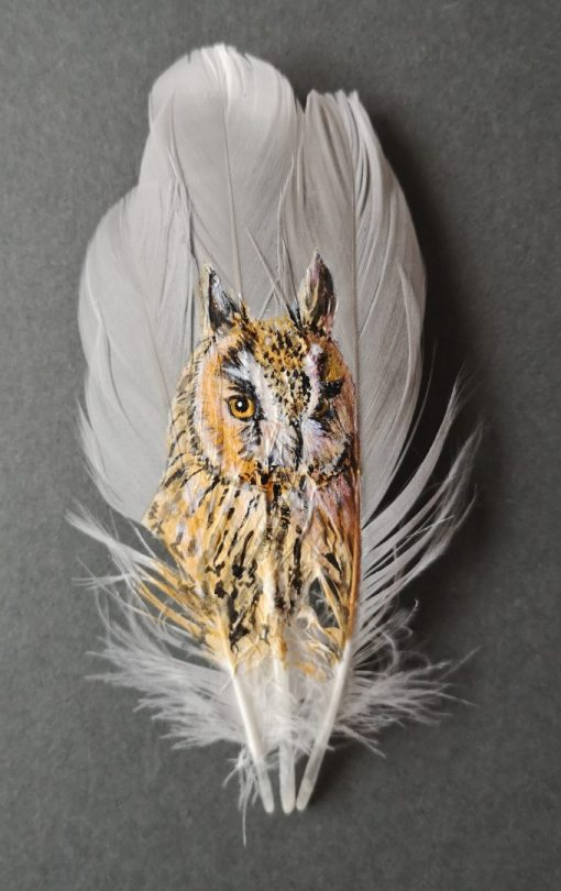 Long Eared Owl Painted Feather