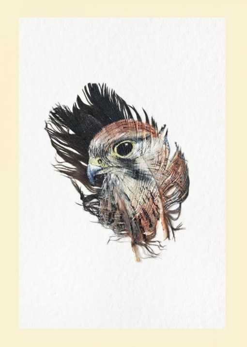Mini Kestrel painted feather greetings card
