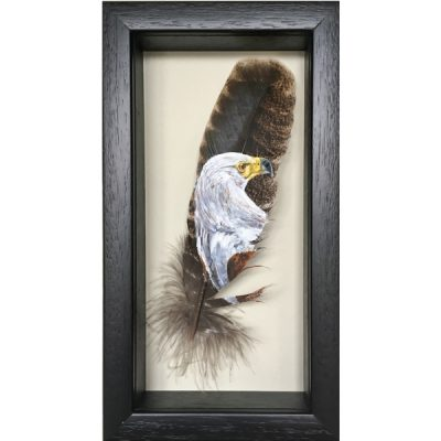 African Fish Eagle painted feather