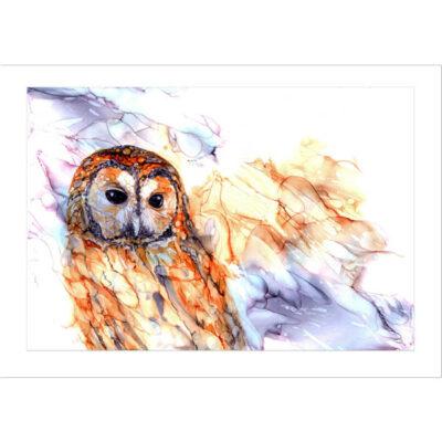Inky Tawny Owl Print