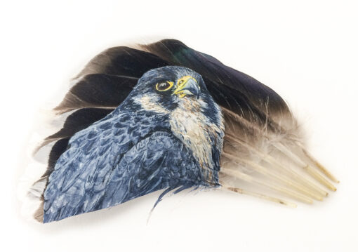 Peregrine Falcon painted on feathers by The Feather Lady